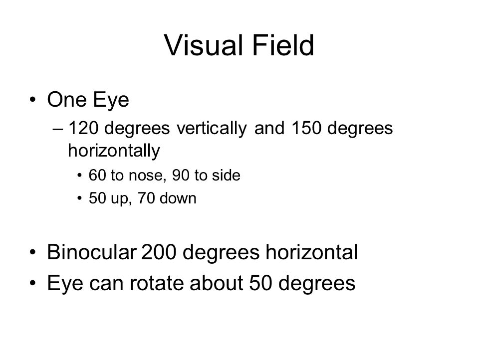 Visual Field One Eye –120 degrees vertically and 150 degrees horizontally 60 to nose, 90 to side 50 up, 70 down Binocular 200 degrees horizontal Eye can rotate about 50 degrees