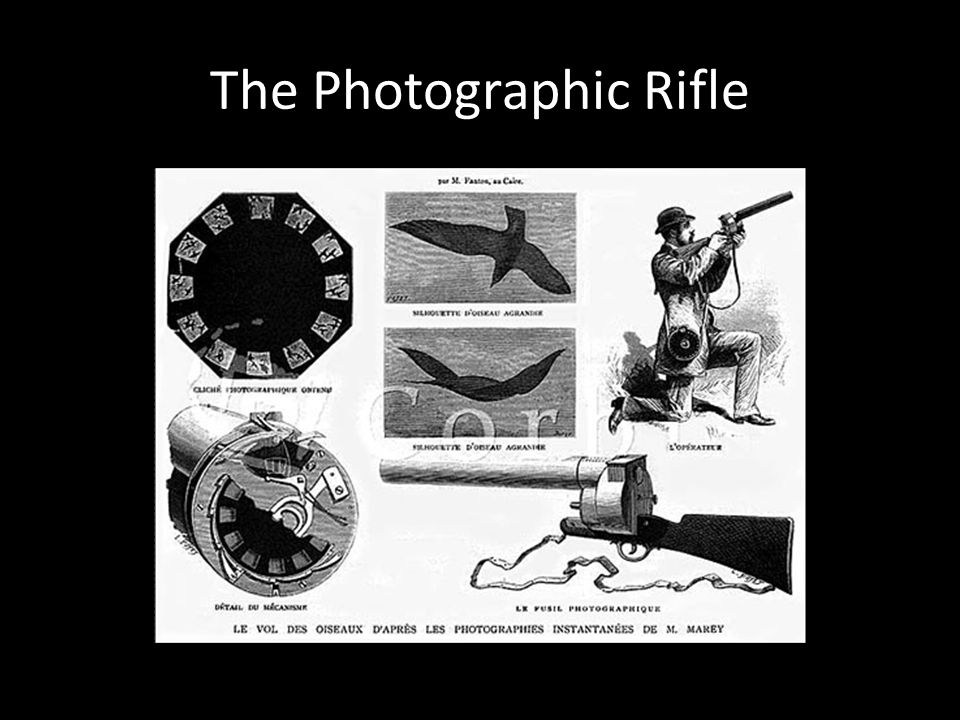 The Photographic Rifle