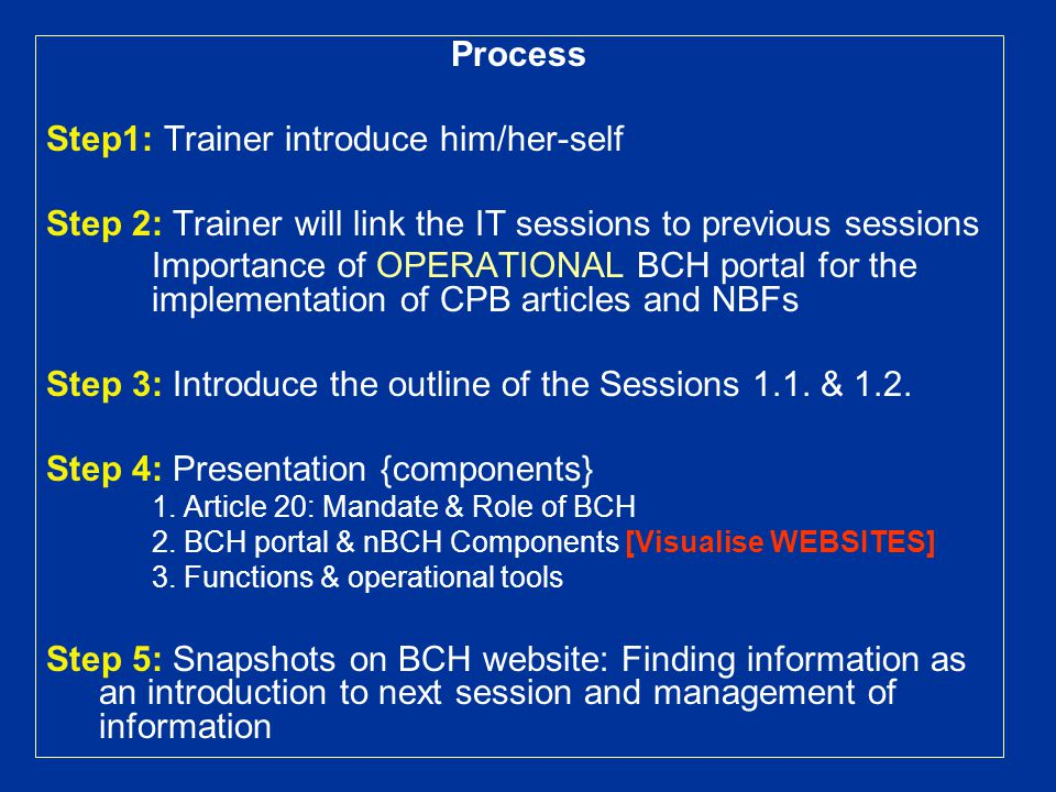 Process Step1: Trainer introduce him/her-self Step 2: Trainer will link the IT sessions to previous sessions Importance of OPERATIONAL BCH portal for the implementation of CPB articles and NBFs Step 3: Introduce the outline of the Sessions 1.1.