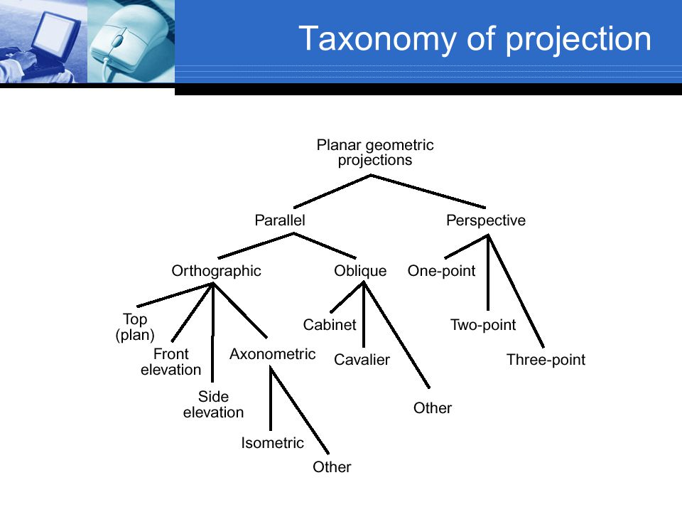 Taxonomy of projection