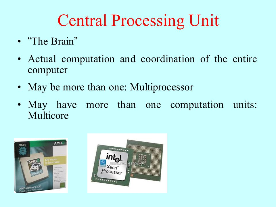 """Central Processing Unit """"The Brain"""" Actual computation and coordination of the entire computer May be more than one: Multiprocessor May have more than"""