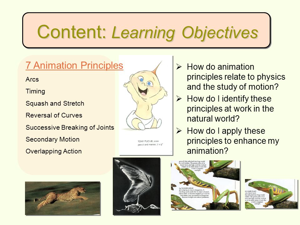 Content: Resources BooksWebsites A ction Analysis Misc.