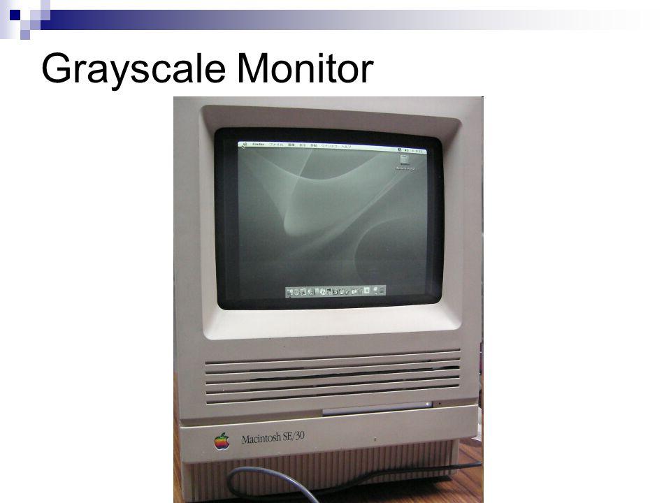 Grayscale Monitor