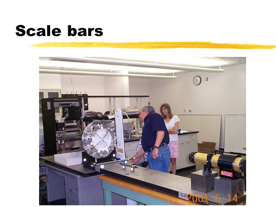 Scale bars