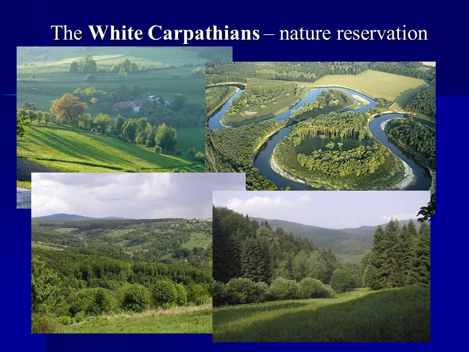 The White Carpathians – nature reservation