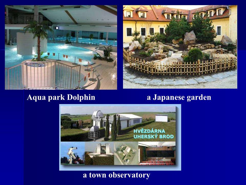 Aqua park Dolphina Japanese garden a town observatory