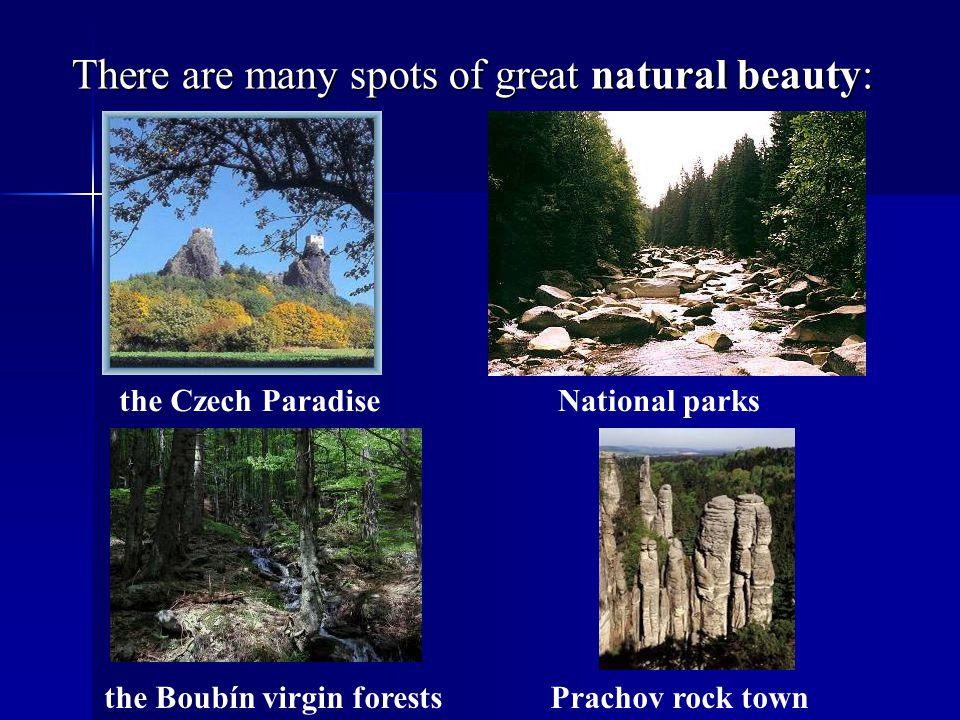 The White Carpathians – nature reservation