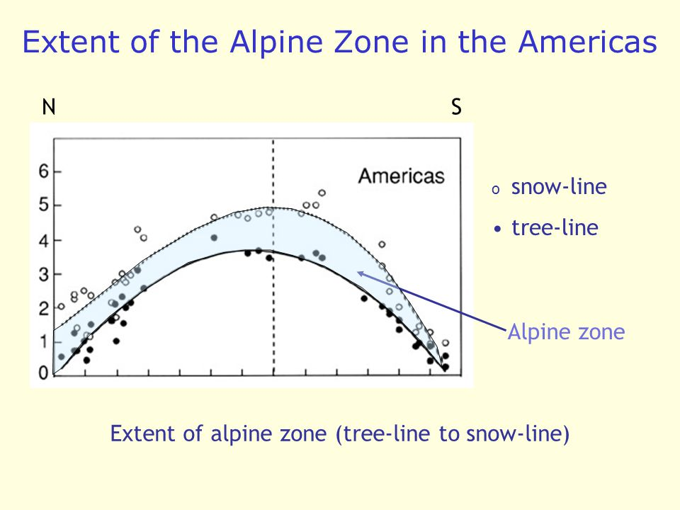 Extent of the Alpine Zone in the Americas Extent of alpine zone (tree-line to snow-line) o snow-line tree-line Alpine zone NS
