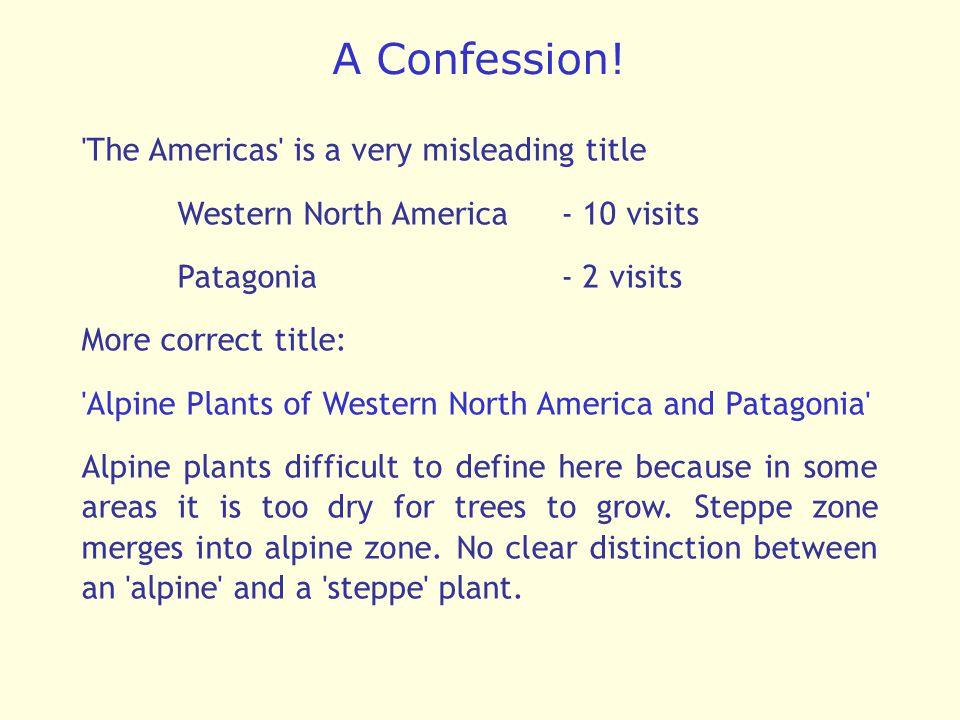 A Confession.