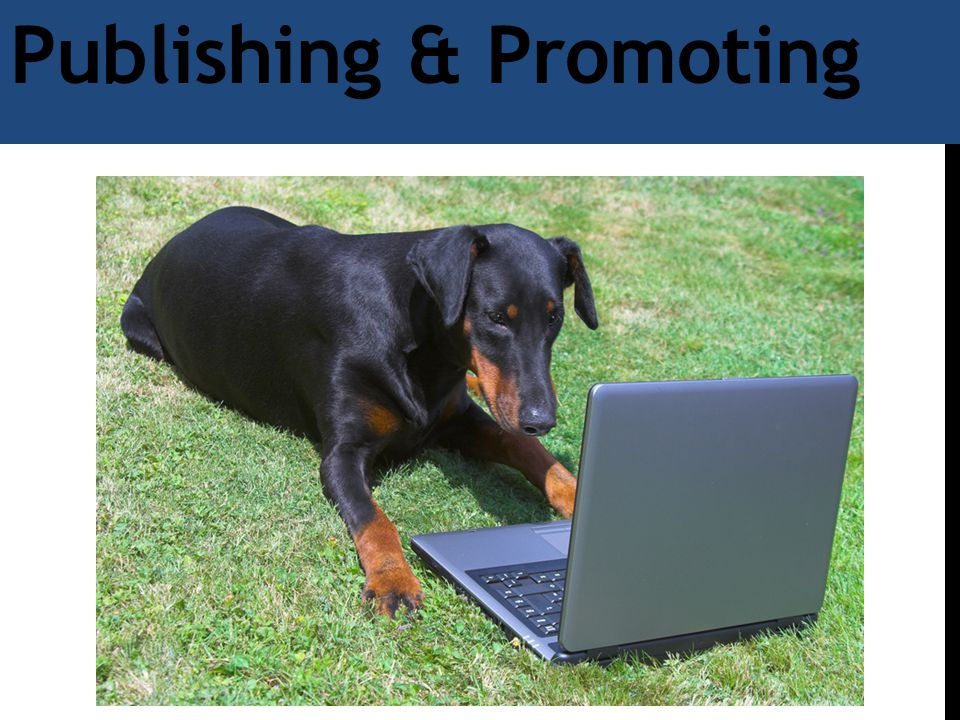 Publishing & Promoting