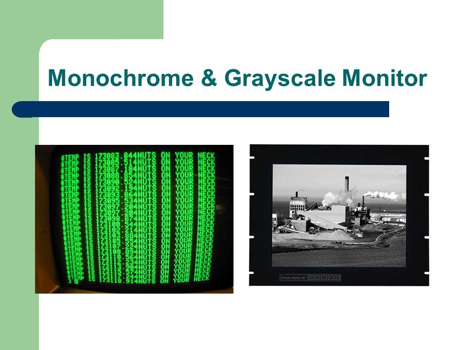 Monochrome & Grayscale Monitor