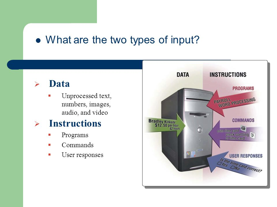 What are the two types of input.