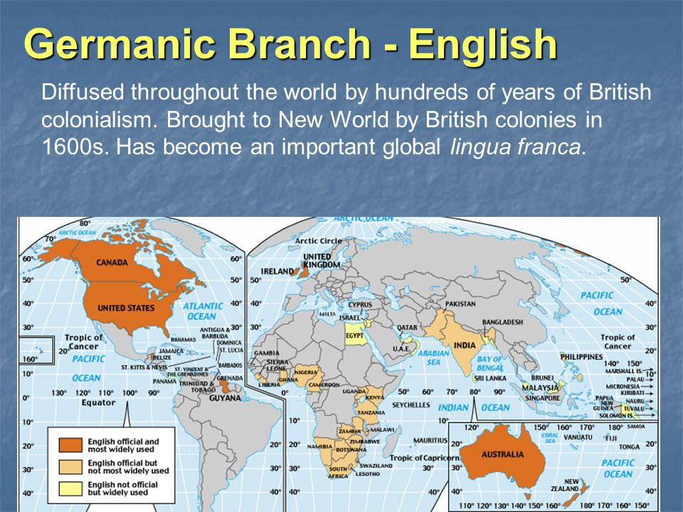 Germanic Branch - English Diffused throughout the world by hundreds of years of British colonialism.