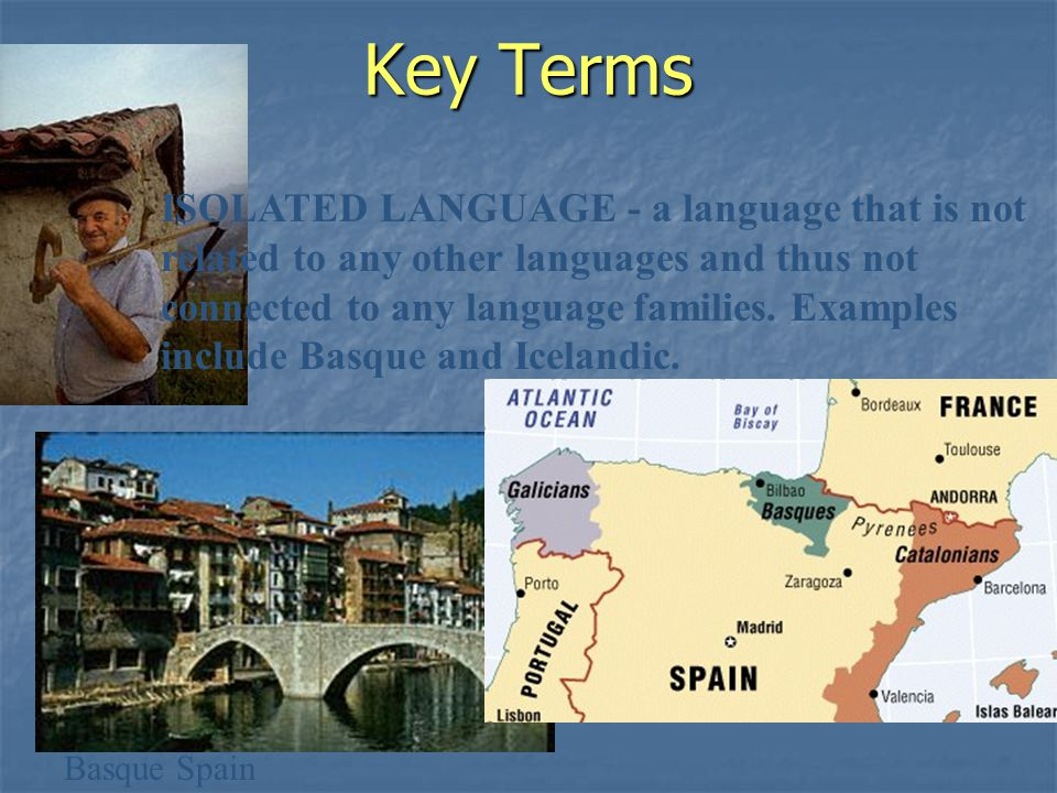 Key Terms ISOLATED LANGUAGE - a language that is not related to any other languages and thus not connected to any language families.