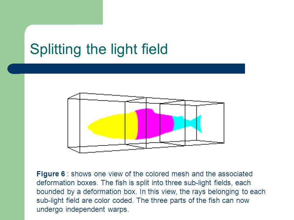 Splitting the light field Figure 6 : shows one view of the colored mesh and the associated deformation boxes.