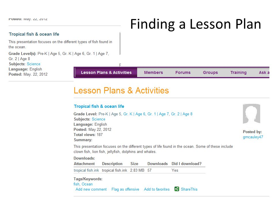 Finding a Lesson Plan