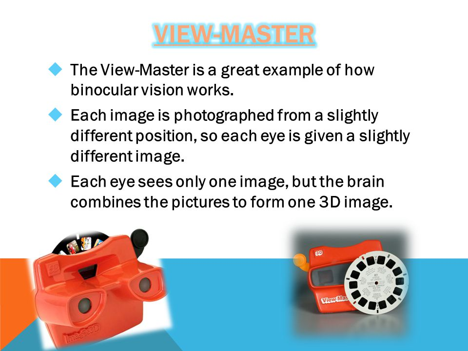  The View-Master is a great example of how binocular vision works.  Each image is photographed from a slightly different position, so each eye is gi