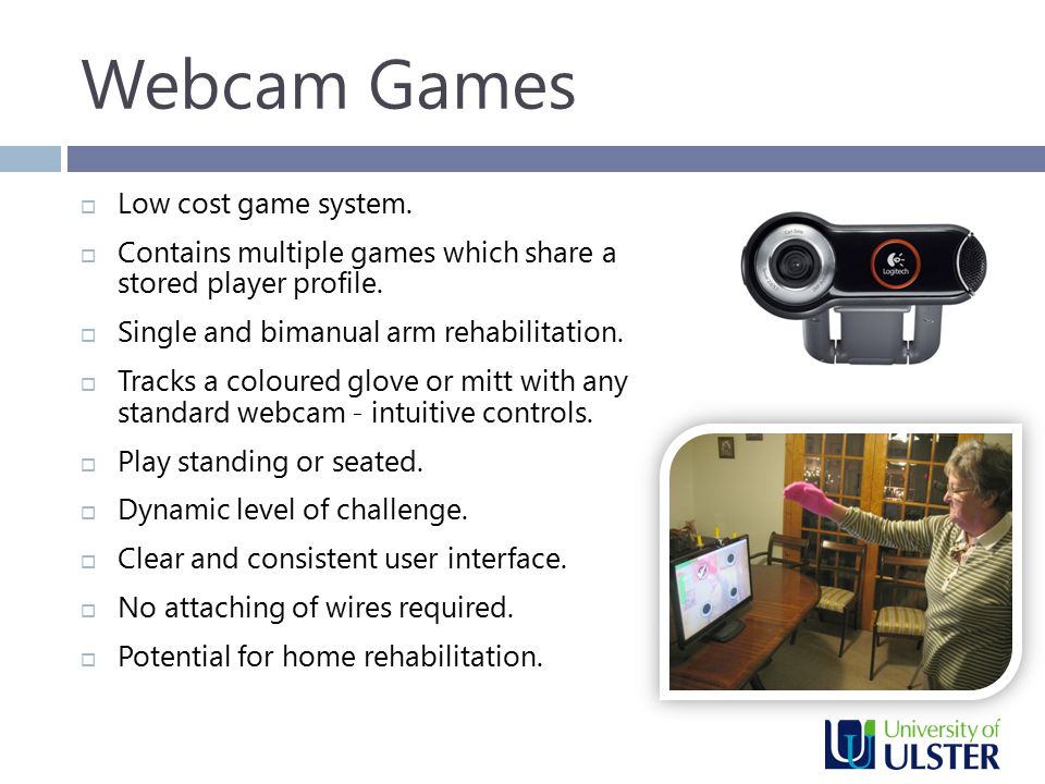 Webcam Games  Low cost game system.  Contains multiple games which share a stored player profile.