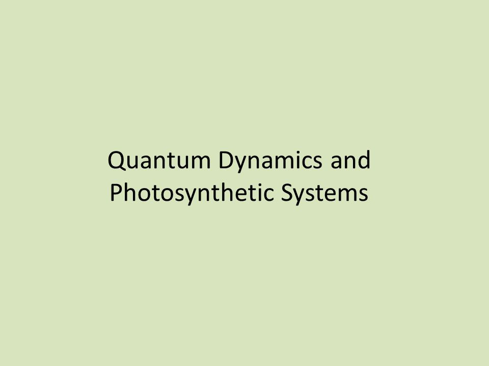 Quantum Dynamics and Photosynthetic Systems