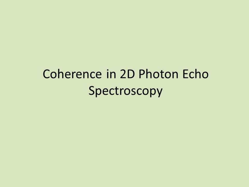 Coherence in 2D Photon Echo Spectroscopy