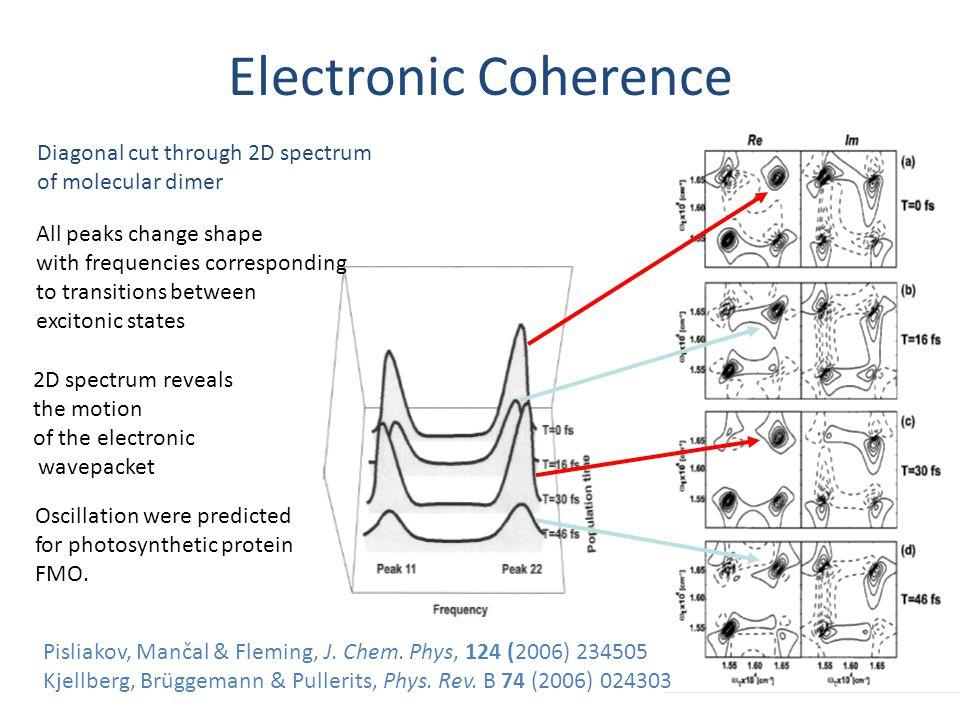 Pisliakov, Mančal & Fleming, J. Chem. Phys, 124 (2006) 234505 Kjellberg, Brüggemann & Pullerits, Phys. Rev. B 74 (2006) 024303 Diagonal cut through 2D