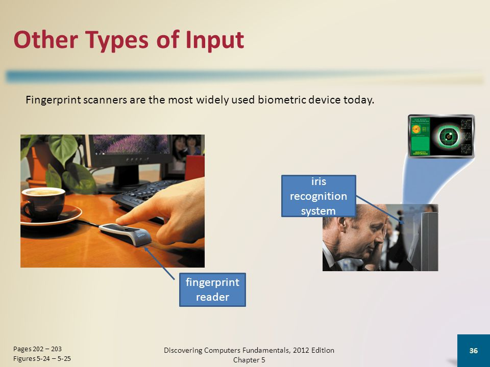 Other Types of Input Discovering Computers Fundamentals, 2012 Edition Chapter 5 36 Pages 202 – 203 Figures 5-24 – 5-25 fingerprint reader iris recognition system Fingerprint scanners are the most widely used biometric device today.