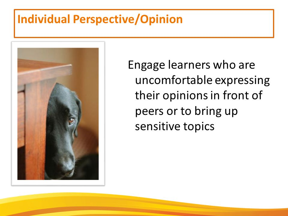 Individual Perspective/Opinion Engage learners who are uncomfortable expressing their opinions in front of peers or to bring up sensitive topics