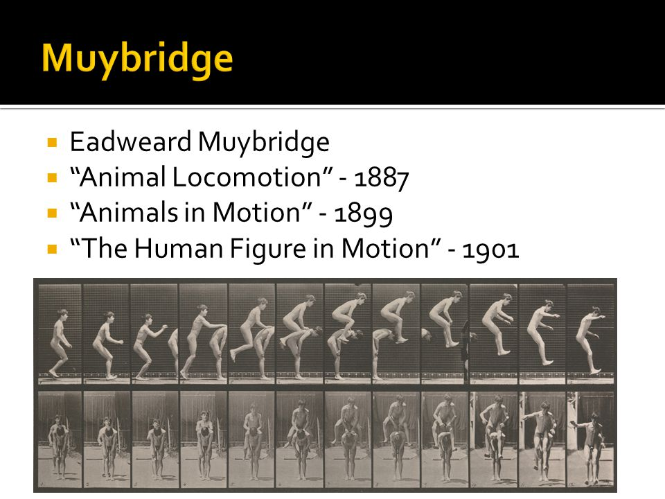  Eadweard Muybridge  Animal Locomotion - 1887  Animals in Motion - 1899  The Human Figure in Motion - 1901