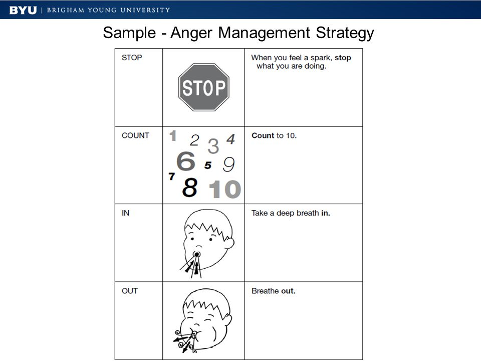 Sample - Anger Management Strategy