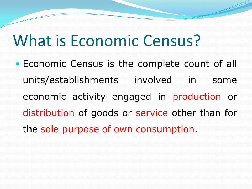 What is Economic Census.