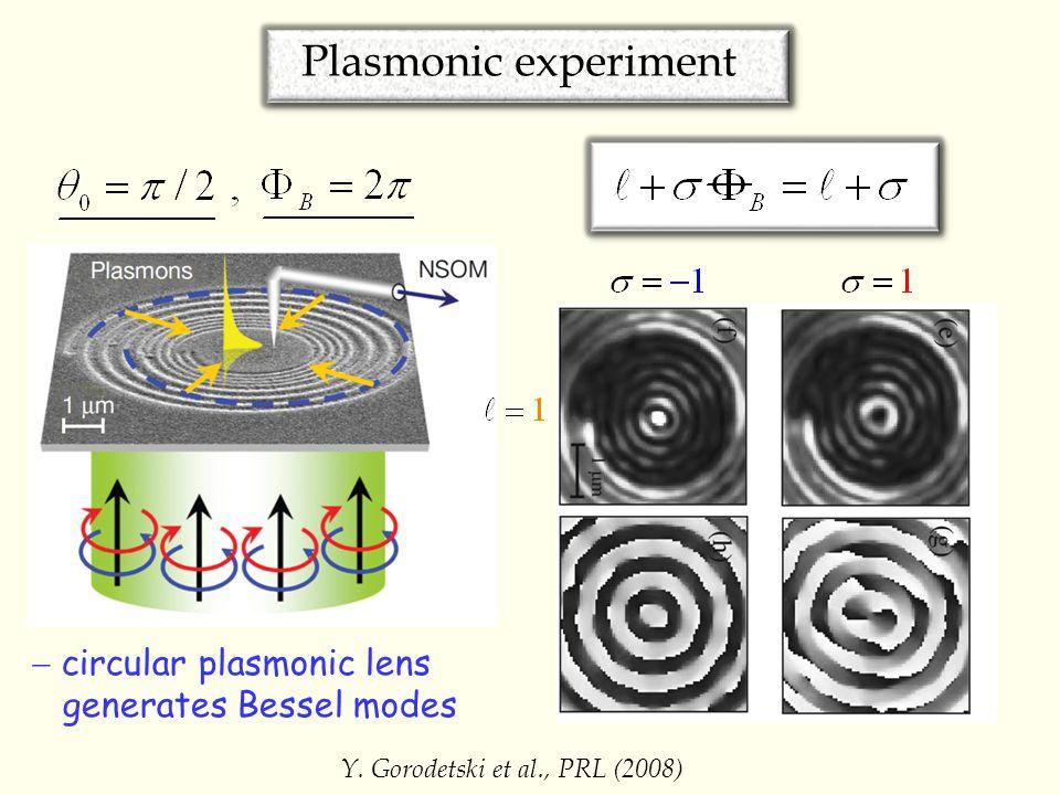 Plasmonic experiment Y.