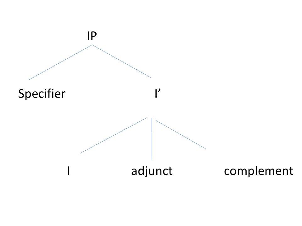 IP Specifier I' I adjunct complement