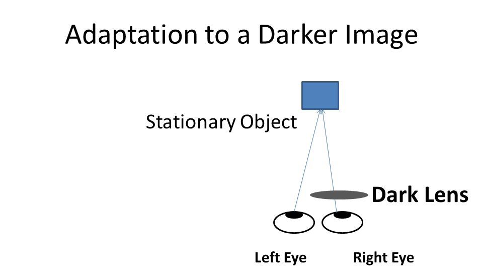Adaptation to a Darker Image Dark Lens Left EyeRight Eye Stationary Object