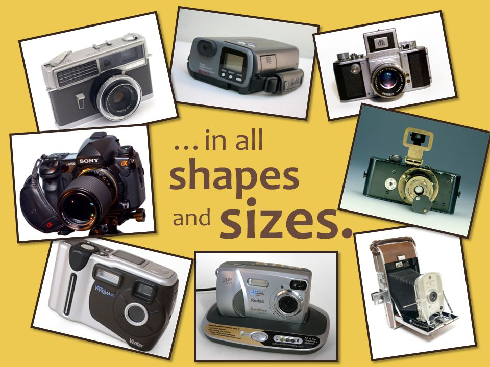 …in all shapes and sizes.