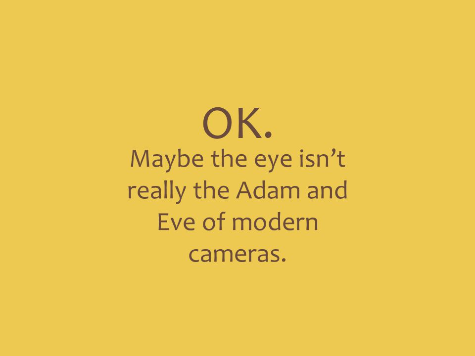 Maybe the eye isn't really the Adam and Eve of modern cameras. OK.