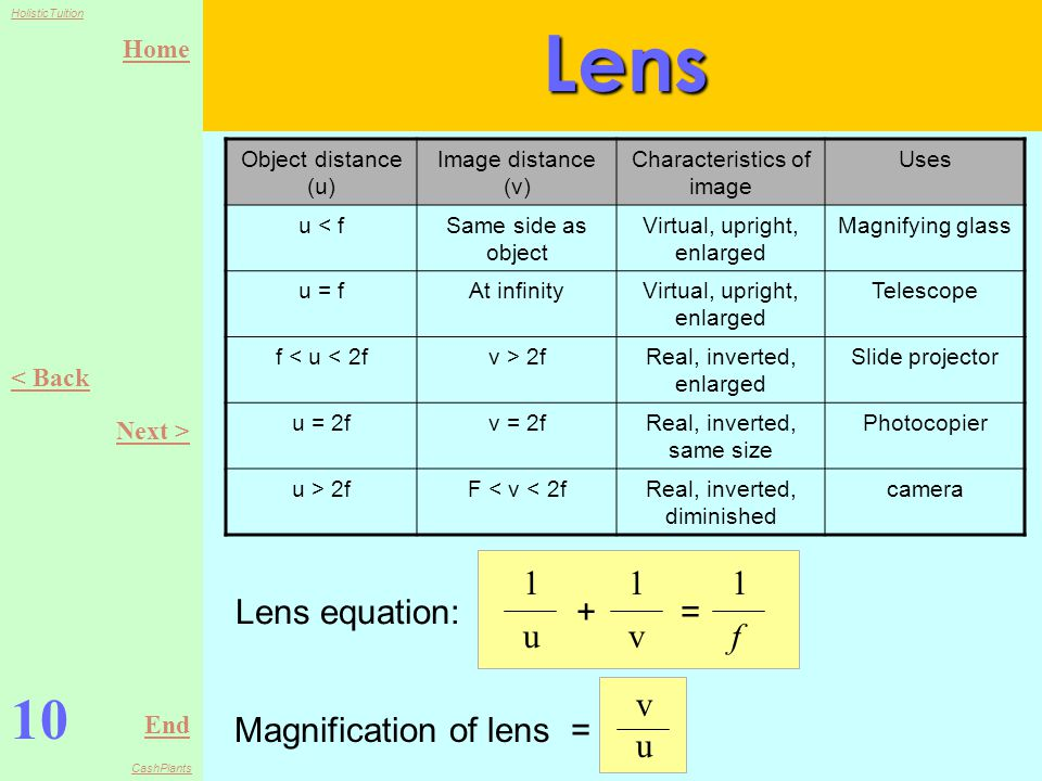 Home End HolisticTuition CashPlants 9 < Back Next >Lens There are 2 types of lenses: convex and concave lenses Convex lens: the point where refracted