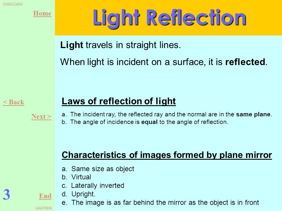 Home End HolisticTuition CashPlants Light Reflection 3 < Back Next > Light travels in straight lines.
