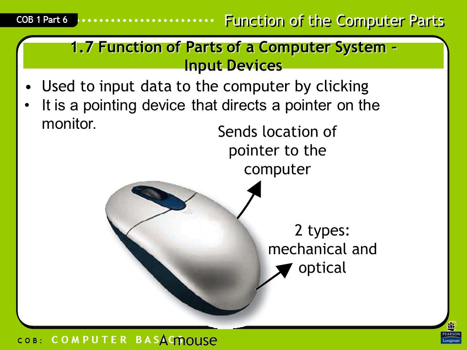 Function of the Computer Parts C O B : C O M P U T E R B A S I C S COB 1 Part 6 Used to input data to the computer by clicking It is a pointing device
