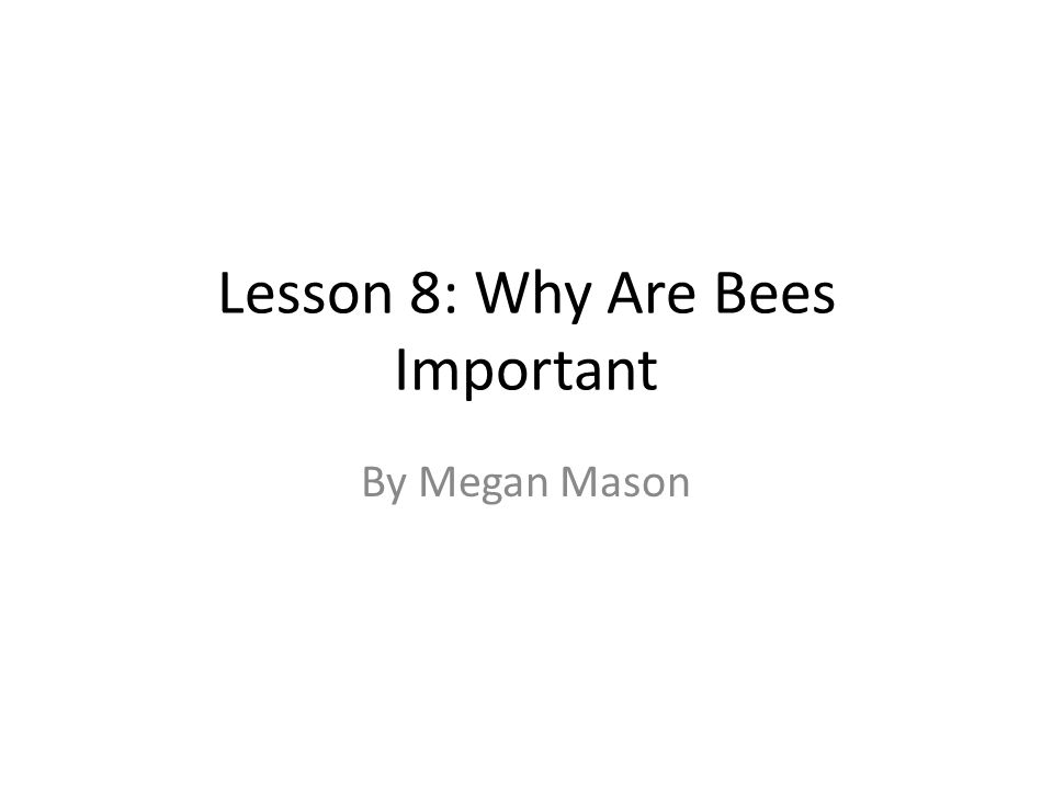 Lesson 8: Why Are Bees Important By Megan Mason