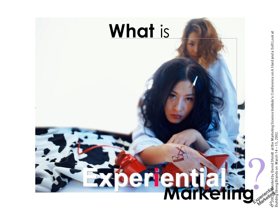 Experiential Marketing 3 © 2002 presented by Bernd Shmitt at the Marketing Science Institute's Conference on A Hard and a Soft Look at Building Strong Brands on March 14 – 15, 2002.