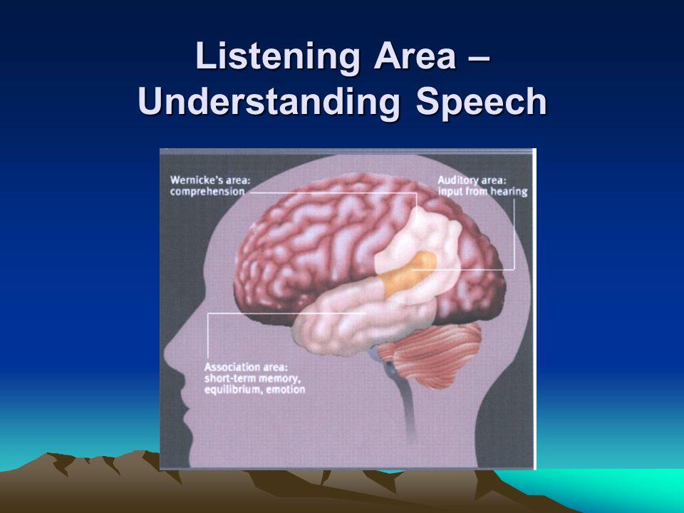 Listening Area – Understanding Speech