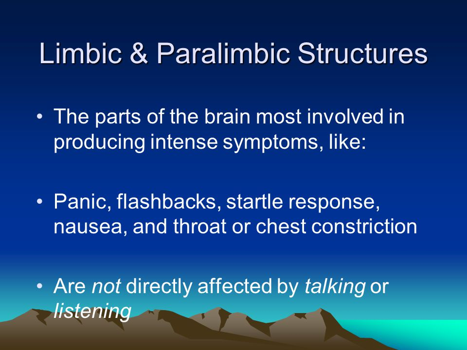 Limbic & Paralimbic Structures The parts of the brain most involved in producing intense symptoms, like: Panic, flashbacks, startle response, nausea,
