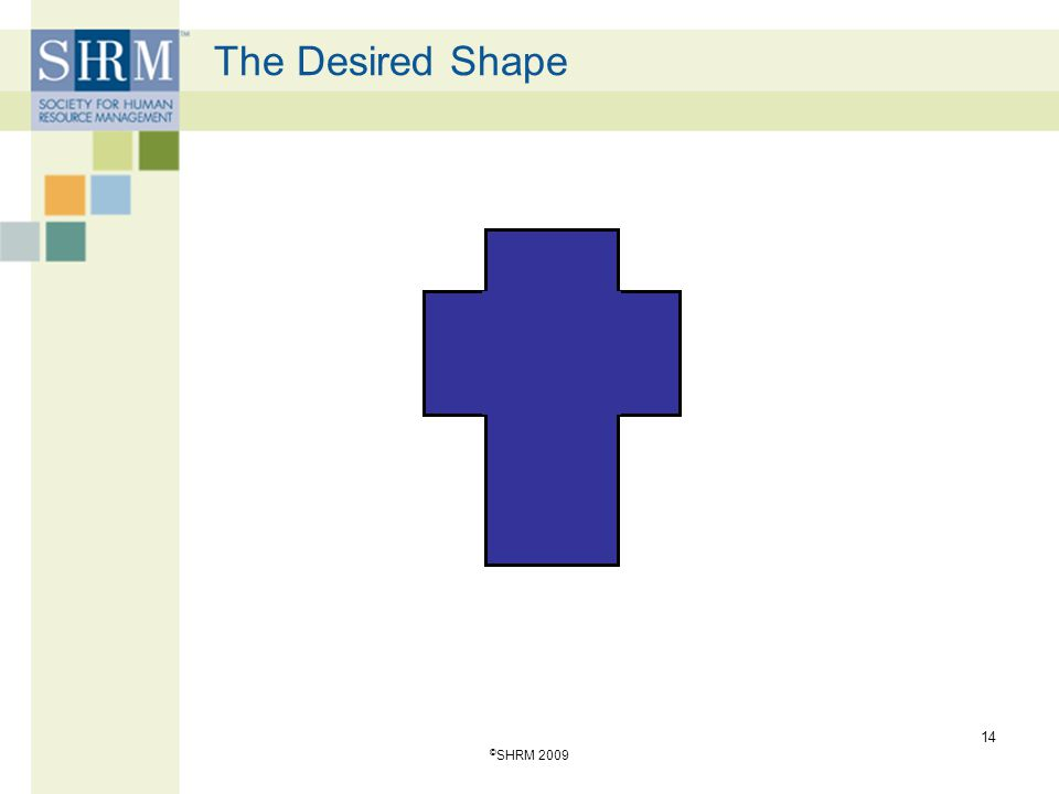 The Desired Shape 14 © SHRM 2009