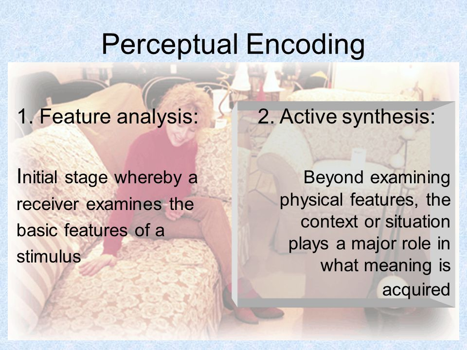 19 Perceptual Encoding 1.