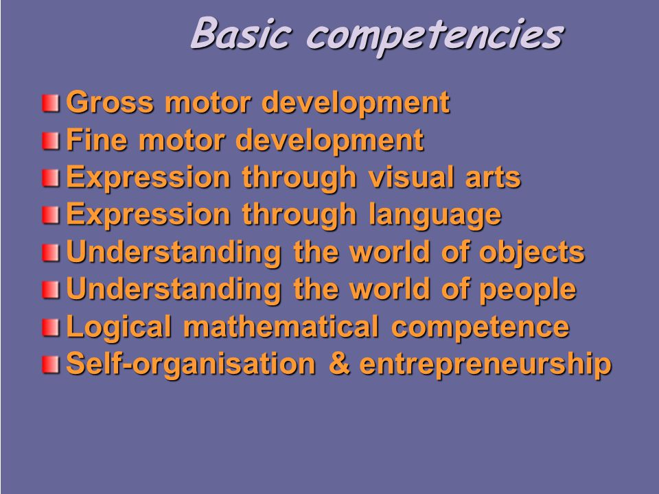 Basic competencies Gross motor development Fine motor development Expression through visual arts Expression through language Understanding the world of objects Understanding the world of people Logical mathematical competence Self-organisation & entrepreneurship