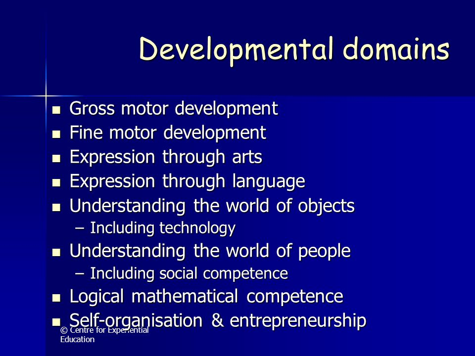 © Centre for Experiential Education Developmental domains Gross motor development Gross motor development Fine motor development Fine motor developmen