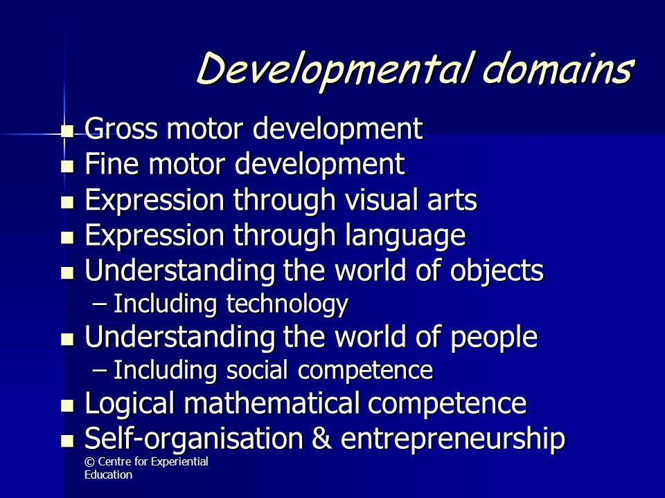 Developmental domains Gross motor development Gross motor development Fine motor development Fine motor development Expression through visual arts Exp