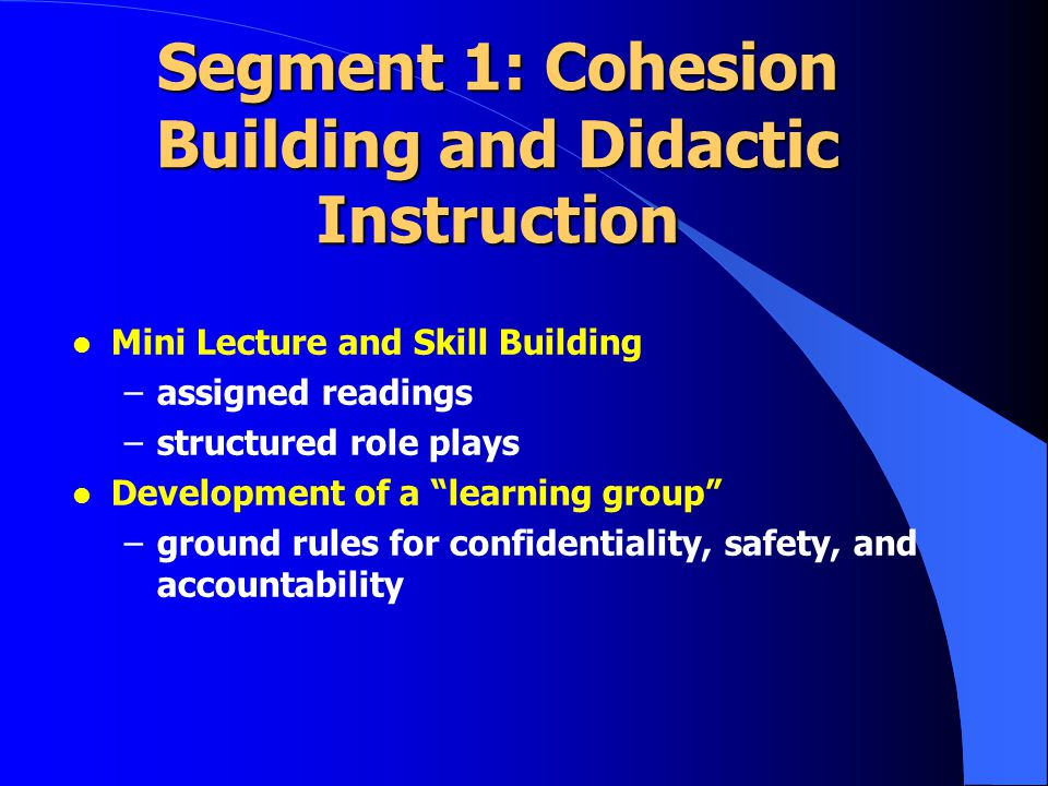 Segment 1: Cohesion Building and Didactic Instruction l Mini Lecture and Skill Building –assigned readings –structured role plays l Development of a learning group –ground rules for confidentiality, safety, and accountability