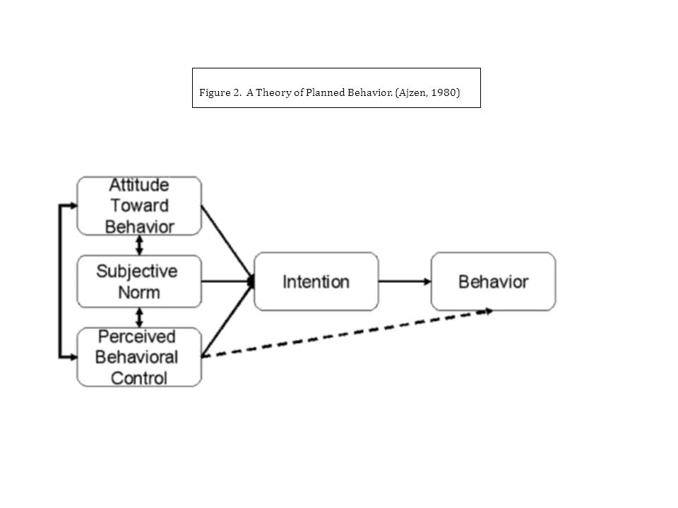 Figure 2. A Theory of Planned Behavior. (Ajzen, 1980)