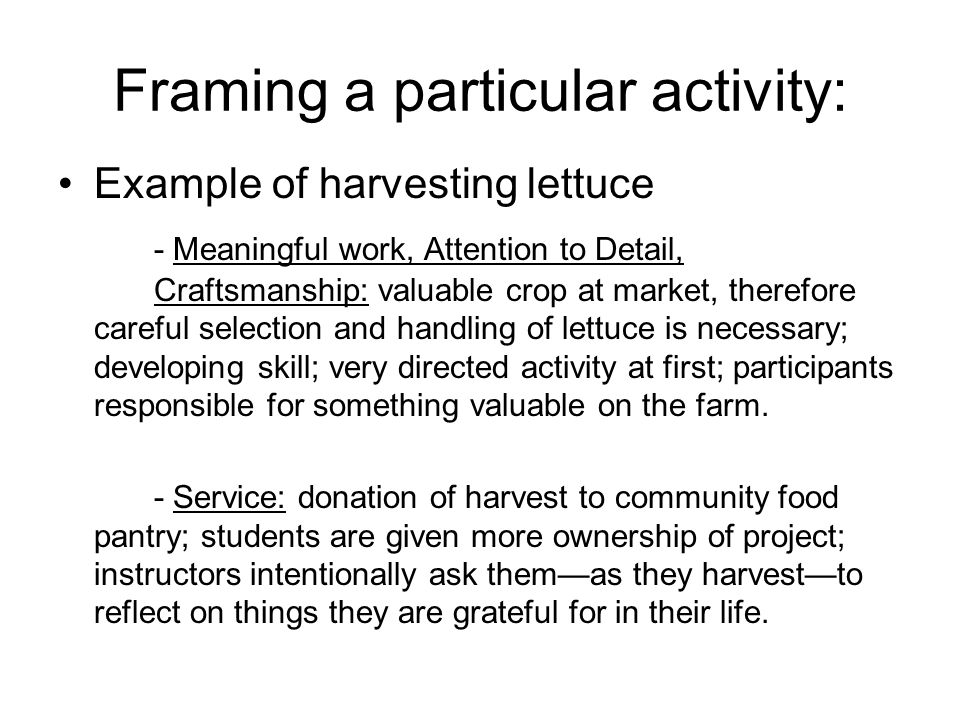 Framing a particular activity: Example of harvesting lettuce - Meaningful work, Attention to Detail, Craftsmanship: valuable crop at market, therefore careful selection and handling of lettuce is necessary; developing skill; very directed activity at first; participants responsible for something valuable on the farm.